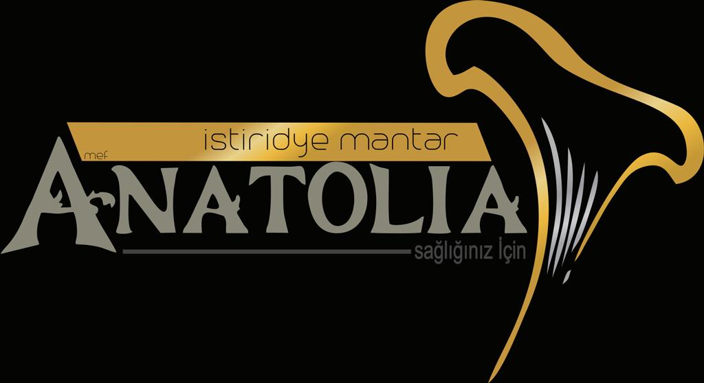 Elazığ Logo Tasarım