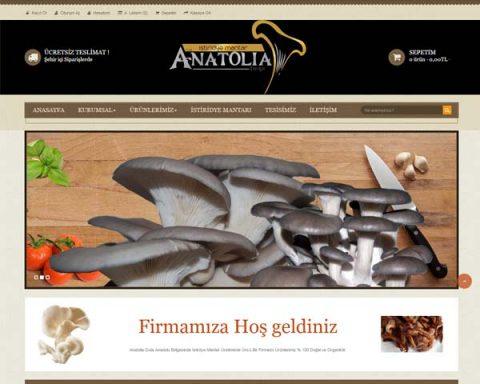 elazığ-web-tasarım-anatolia