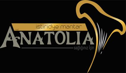 ANATOLİA